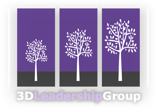 3D Leadership Group